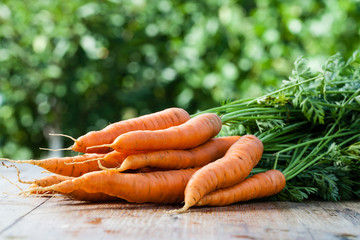 fresh carrots bunch