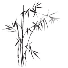 Bamboo branches outlined in black