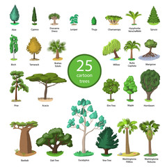 25 Diversity of trees set