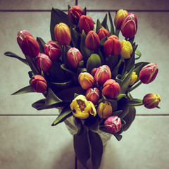 Bouquet of colored tulips in contrast colors