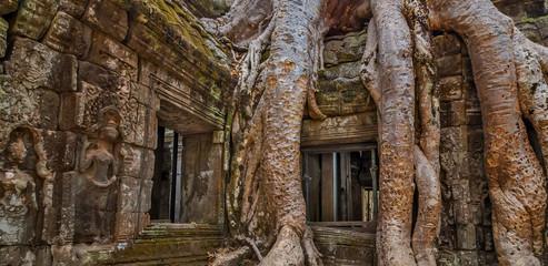 Cambodia.