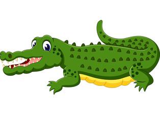 cute Crocodile cartoon of illustration