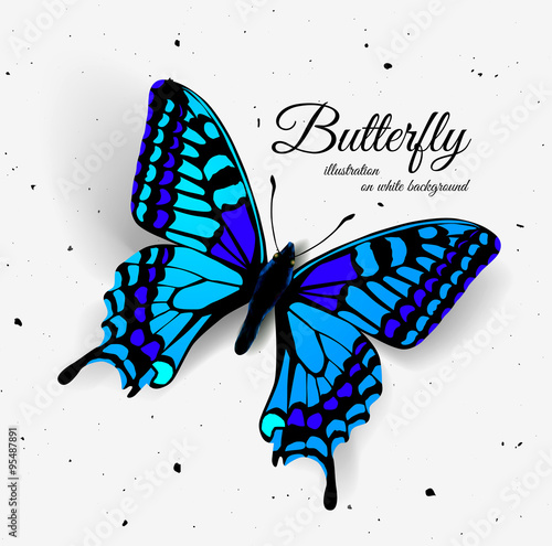 Realistic butterfly with shadow and noise.