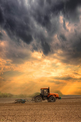 Tractor cultivating the field