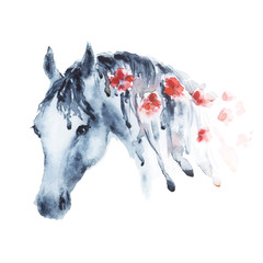 Wet watercolor horse head with red flowers in mane. Beautiful hand drawing illustration on white.