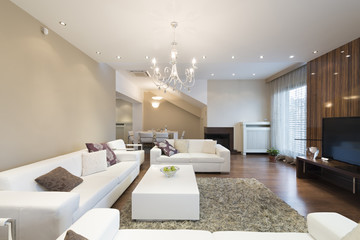 Interior of a spacious living room with fireplace in luxury apar