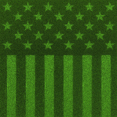 The grass and stripes / 3D render of USA flag grown from grass