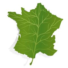 Carte France Feuille