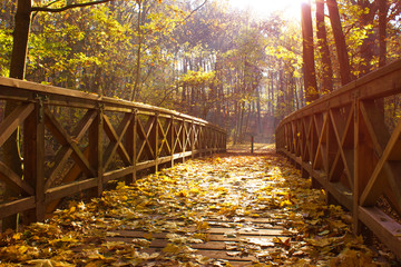 Hiking Trail leading over a wooden Bridge