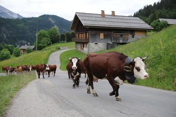 Le Reblochon d'Alpage