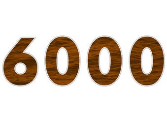 6000 sayısı
