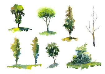 Watercolor set of trees on white background
