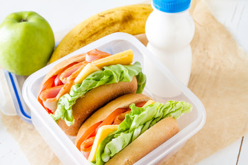 Lunch box with sandwich salad and friuts