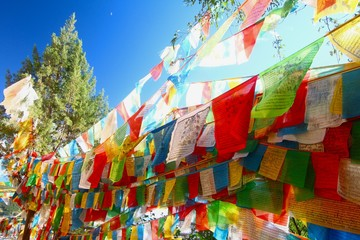 The Colorful prayer flag  at Shangri-La, formerly known as Zhongdian County, is the capital of Diqing Autonomous Prefecture.Yunan, China