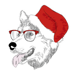 Collection of purebred dogs . Husky . Dog were drawn by hand. Vector Dog in Christmas hat .