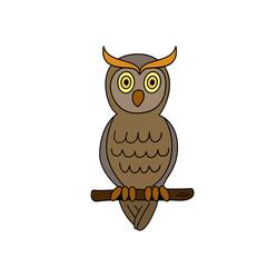 Funny sitting owl