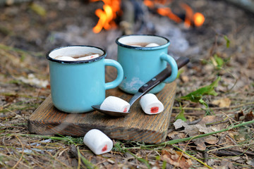 Cocoa with marshmallow in mugs on the ground