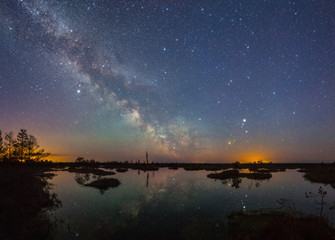 Starry night at a swamp