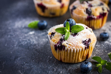 Blueberry muffins with powdered sugar and fresh berry
