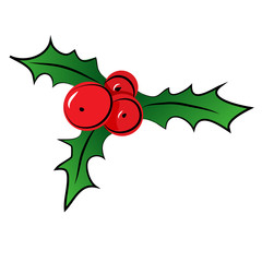 Vector sketch of Christmas holly berry.