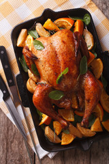 roasted chicken with oranges close-up in a pan. vertical top view