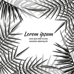 Wall Mural - Abstract vector exotic background with tropical palm leaves