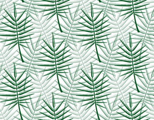 Wall Mural - Tropical palm leaves vector seamless pattern