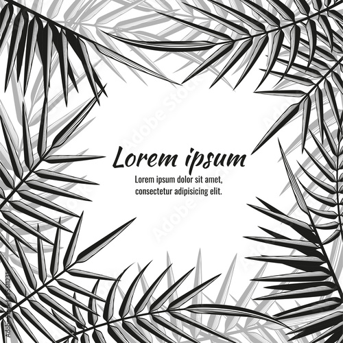 Wall mural Abstract vector exotic background with tropical palm leaves