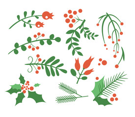 Red Berries, Branches Fir and Leaves. Vector Illustration Set