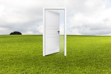 Tür auf der Wiese