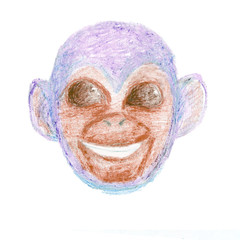 Crayon hand drawn head of blue smiling monkey