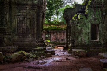 The Ruins of Ta Prohm