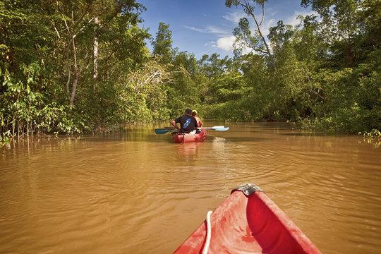Canoé kayak sur la Gabrielle-Guyane