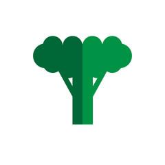 broccoli color icon flat vector vegetable