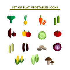 set of color vector flat icon vegetable