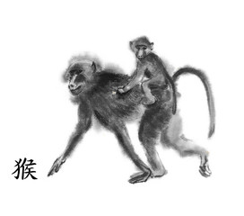 "Monkey oriental ink painting with Chinese hieroglyph ""monkey"". Baboon mother with a baby riding on her back. Isolated on white background. Symbol of the new year of monkey."