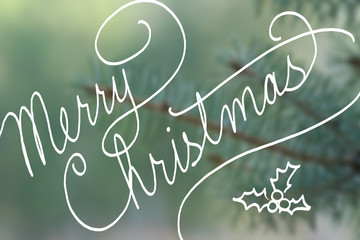 merry Christmas typography in hand written cursive handwriting, Merry Christmas text on blurred blue spruce pine tree needles in soft outdoor nature background