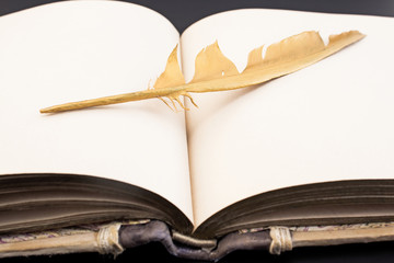 Gold feather and book on a black background