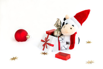 The plush caw in the christmas cap and scarf with gift box, chocolate and red ball. White background with free space.