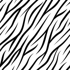 Zebra Stripes Seamless Pattern