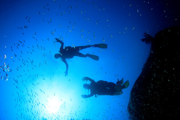 Scuba diving on underwater coral reef