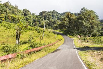 Panama Boquete Landscape, Quetzal Trail