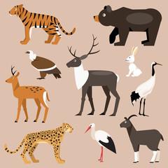 Set of animal Far East. Vector Illustration