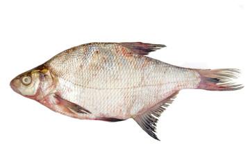 The raw fish bream