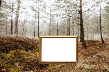 Табличка на фоне леса