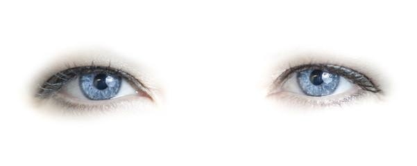 Blue female eyes on white