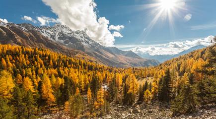 Foto auf Gartenposter Gebirge Val di Campo - Grigioni (CH) - paesaggio autunnale