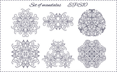 six isolated floral elements forming mandala patterns