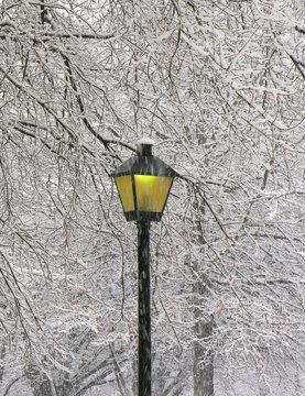 Snow fall in Virginia