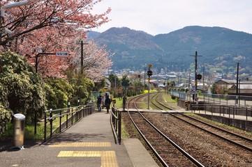 railway at Yufuin train station with cherry blossom (sakura) and mountain background in Oita, Japan. Tourists enjoy beautiful scenery.